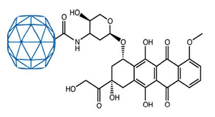 Utilising a plant virus for delivery of therapeutic agents